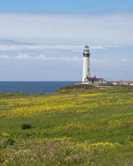 """Photo of lighthouse surrounded by sea, blue sky and flowering meadow and houses.  Gen 26 Isaac moved on and dug another well. This time there was no dispute over it, so Isaac named the place Rehoboth (which means """"open space""""), for he said, """"At last the Lord has created enough space for us to prosper in this land."""""""