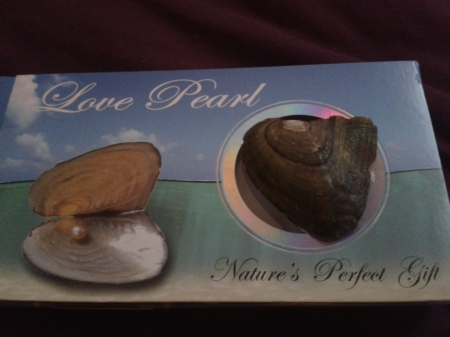 Creating a pearl saves an Oyster's life rather than destroying it Photo of love pearl trinket and oyster shell