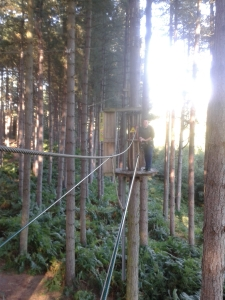 Photo of lad at Go Ape up in the trees, harnessed