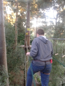 Son at Go ape.   Photo of boy high in trees, roped up going across rope bridge