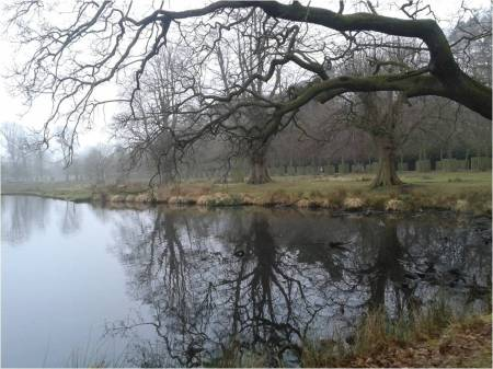 Bare tree reflected in lake at Dunham Massey