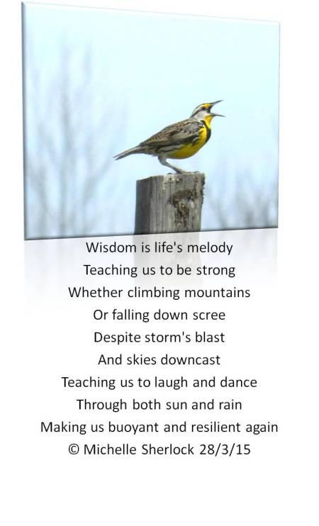 lifes melody